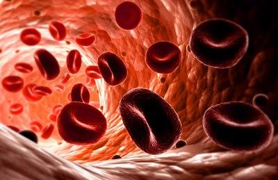 Методы определения допустимой кровопотери и поддержание объема крови