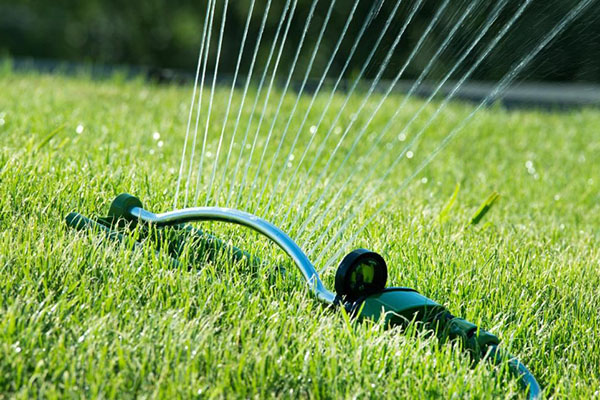 Особенности систем полива газона