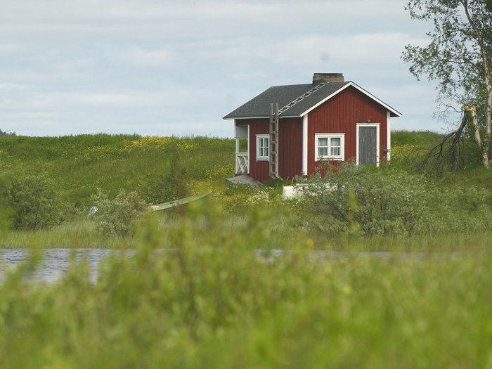 Как выбрать и где купить землю в Подмосковье?