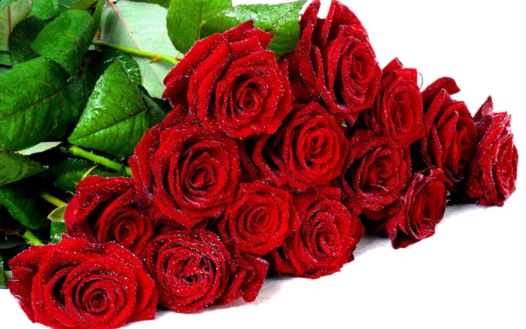 Ваше торжество станет необыкновенным с сервисом доставки цветов